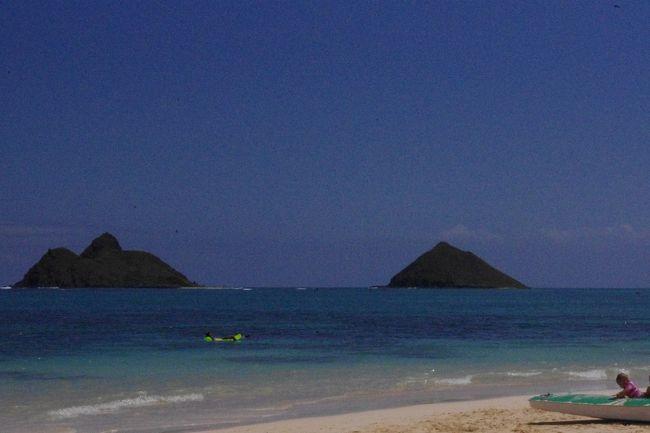ハワイ再び ノンビリ気ままにTHE BUSに乗り天国の海(カイルア・ラニカイビーチ)でエネルギーチャージ3日目