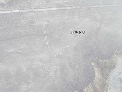 新イグアス・ペルー南米大陸 ゴールデンルート 11日間(ビジネスプラン)  ~ナスカの地上絵~