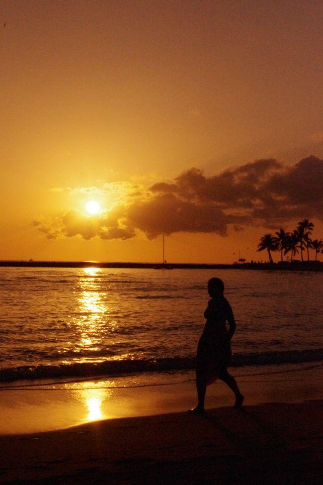 殆ど興味の無かったハワイでしたが<br />一昨年の初ハワイ以来、<br />すっかりハワイマジックにかかってしまい<br />爽やかな空気に包まれたくて再び渡ハしました。<br /><br />今回はオアフ島一島にし<br />ノンビリ気ままに<br />予め予定をして来た行き先を当日の天候を考慮し決行する事にし<br />オアフ島全土を網羅する唯一の交通機関THE BUSやトロリー利用<br />また人並みにショッピングも楽しみました。<br /><br />四~六日目帰国<br />旅も終盤、遠出をせずに<br />文字通りノンビリ気ままに<br />ワイキキの西側に位置する宿泊ホテルから<br />東側に位置するカピオラニ公園まで寄り道しながら<br />散歩を楽しむことに。。。<br /><br />