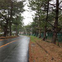 旧東海道を歩く 掛川→東海道のどまんなか袋井宿まで