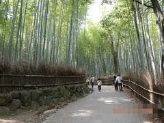 春ののんびり京都・大阪旅行3日間②