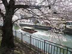 満開だぜ!! 2013 『平安神宮周辺の桜は満開♪♪明日は、雨予報なので行ってきました!!』 IN 平安神宮(作成中)
