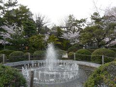 半田市の雁宿公園は桜の名所です。