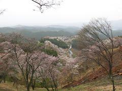 2013年04月 吉野山桜 を見に行ってきました。