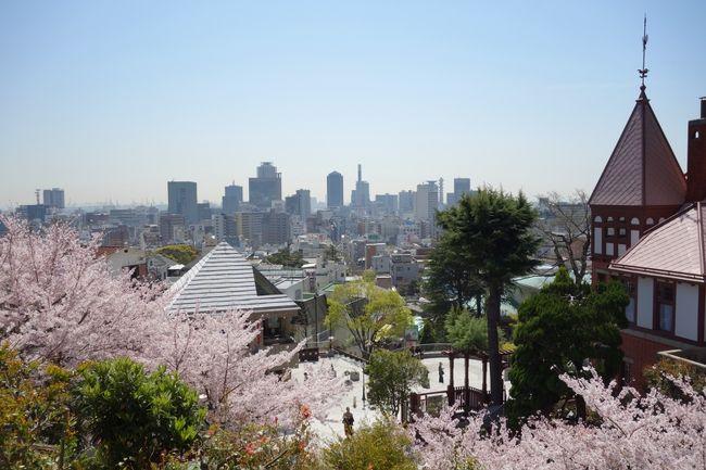 有馬温泉を含めて初神戸のG家。妻と娘に「向こうに行ったら何をしたい?」と尋ねたら、真っ先に返ってきたのは異人館散策だった。神戸イコール異人館。そんなイメージを抱いていたらしい。そんな私も同じで、あとは震災があった街。幸い1泊2日の全行程すべて天候に恵まれ、さらに桜も楽しめて楽しい旅行となった。