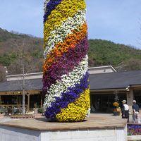 みかも山とちぎ花センターと唐沢山