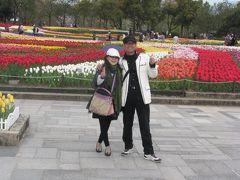 木曽三川公園チューリップ祭