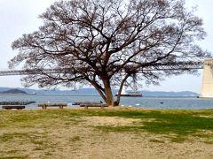 瀬戸内国際芸術祭2013 沙弥島へ行って来ました