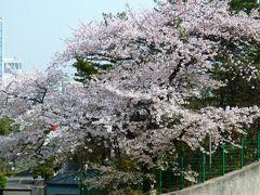 春の韓国・アジュンマ一人旅♪ 1日目~周囲の心配を蹴ちらし出発~