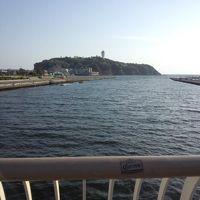 初江ノ島を満喫