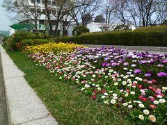 春の韓国・アジュンマ一人旅♪ 2日目-② ~体調最悪!気力で乗切れ~