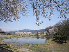 春だ。桜を見に行こう① ~長野・川中島と松本城編~