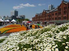 春のみなとみらい♪ Vol6(第2日目午前) ☆赤レンガ倉庫と美しい花畑♪
