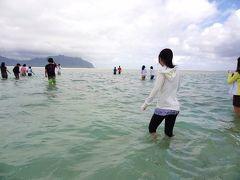 ハワイ家族旅行2013・2日目