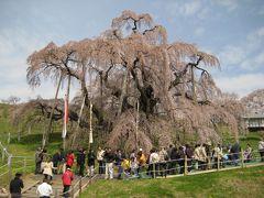 福島の春を訪ねて