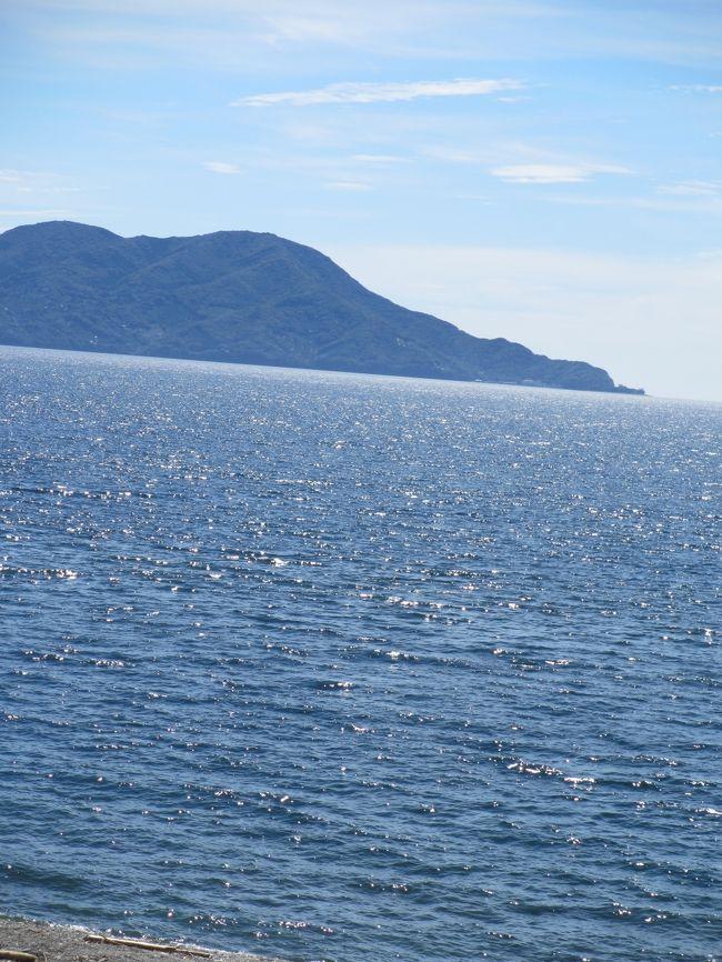 ワンコと一緒に、一泊二日で浜名湖へ行って来ました。<br />ウェイクボードにも初挑戦!身体を動かし、美味しい物を食べて、楽しい休日を満喫しました♪
