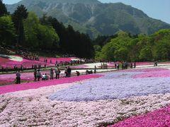 '13 羊山公園と長瀞1 羊山公園の芝桜編