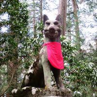 <新緑の秩父路・パワーチャージの旅・2>関東一? オオカミが見守る「三峯神社」