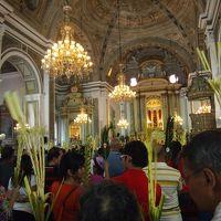フィリピン(1)マニラ折しも枝の主日