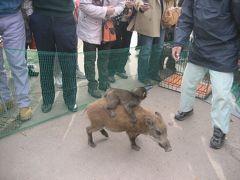 カニ食べついでに福知山市動物園