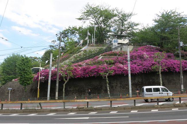 GWの隙間平日を狙って各種手続きを行うため王子に行ってきました。手続きだけを淡々と行うのはつまらないので以前行きそびれた飛鳥山博物館関係を見学に行ってきました。渋沢栄一ってすごい人だったんだなぁと感心しきりの一日です。<br /><br />飛鳥山博物館<br />http://www.city.kita.tokyo.jp/misc/history/museum/<br /><br />渋沢史料館<br />http://www.shibusawa.or.jp/museum/<br /><br />