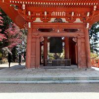 此処でもまだ桜祭り~比叡山延暦寺~