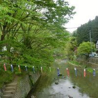 新緑と鯉のぼり、茨城・袋田の滝から花貫渓谷へ