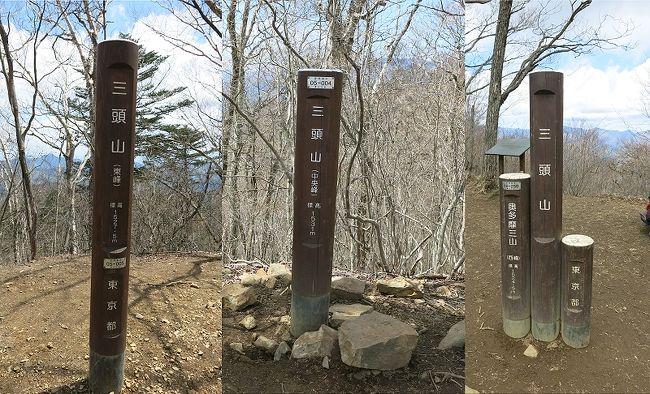 奥多摩三山第2座 三頭山に登る ~行きはよいよい、帰りは…~