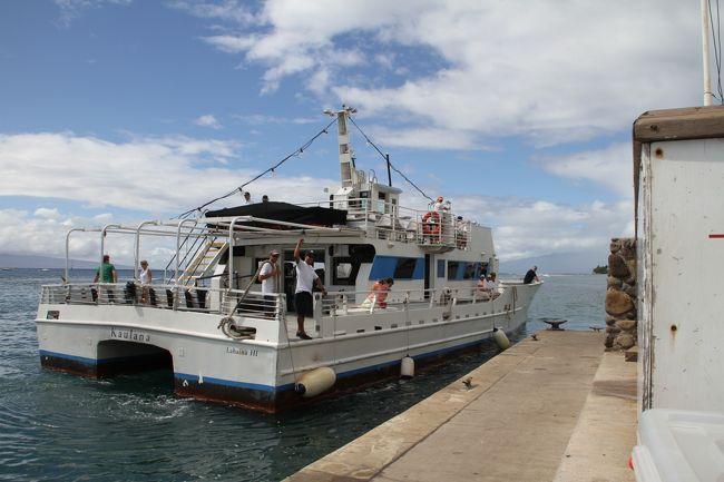 十数年前初めて冬のマウイ島を訪れた私たちは、カパルアウエスト空港からの坂道を下る途中、彼方の海面に突然現れた鯨のブリーチングに驚嘆し、その魅力に取り付かれ、それ以来毎年冬にはマウイ島を訪れることにしています。ハワイ諸島のウェールウォッチングは日本の小笠原や沖縄でも見られるざとう鯨(英名:Humpback whale)で、歌を歌うことやブリーチ等の様々なパフォーマンスすることで知られており、冬季には数千頭以上がはるばるアラスカから数千キロの距離を出産と子育てのため暖かいハワイ海域にやって来ていると言われています。<br /><br />ウェールウォッチングはオアフ島やビッグアイランドでも見られますが、特にマウイ島とりわけ、モロカイ、ラナイそれにカフォラベェ島に囲まれるこの海域の環境は子育てに適しており、外敵もすくないことから、鯨の個体数も多く、陸から2〜300メートル沖を遊泳する姿やブリーチングを見ることができる世界的にも類を見ないところだと思います。ウォッチングボートはラハイナ、マアラエア、キヘイの各港やカアナパリのビーチから頻繁に出港しています。是非一度は騙されたと思って挑戦してみたらいかがでしょうか。