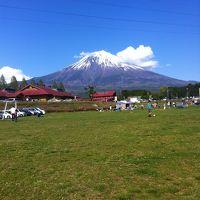 富士山麓に鳴く動物たち【富士旅行記1/3】