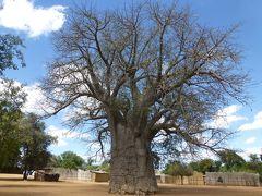 たった2時間の隣国集落訪問ツアー(アフリカ南部デビューの旅)