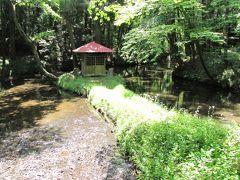 佐倉市散策(39)・・佐倉の湧き水30を訪ねます。