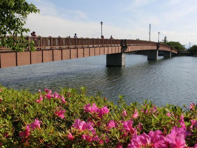 太田の「北部運動公園」と同じく、2008年「第25回全国都市緑化ぐんまフェア」<br />のサテライト会場だった「波志江沼環境ふれあい公園」で<br />「花と緑のぐんまづくりin伊勢崎」〜ふるさとキラキラフェスティバル〜<br />開催中で花がきれいらしいということで奥さまと愛犬を連れて行ってきました。