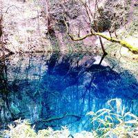 <青森・津軽&西海岸の旅.5>ホントに青かった・・・「白神山地・十二湖」散策