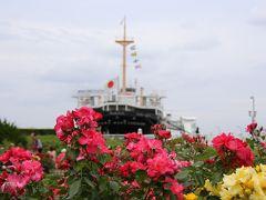 横浜散歩:山下公園から港の見える丘公園のバラ