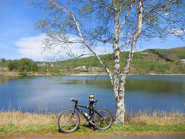 例年のことながら、5月中旬になると私は「ホテルアンビエント蓼科」に行き、1週間ほど滞在する。今年は寒さが長引き、春の訪れが遅くなったようであるが、女神湖周辺のカラマツがようやく芽吹き、白樺の小枝にも若葉が萌えはじめた。蓼科にもやっと本格的な春がやってきた、という感じである。今回は自宅からマウンティンバイクを持参し、高原のサイクリングを目論む。(1人旅)<br /><br />写真:湖畔のサイクリング<br /><br />私のホームページ『第二の人生を豊かに―ライター舟橋栄二のホームページ―』に旅行記多数あり。<br />http://www.e-funahashi.jp/<br />