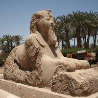 2013春のエジプト3泊4日★4 メンフィス