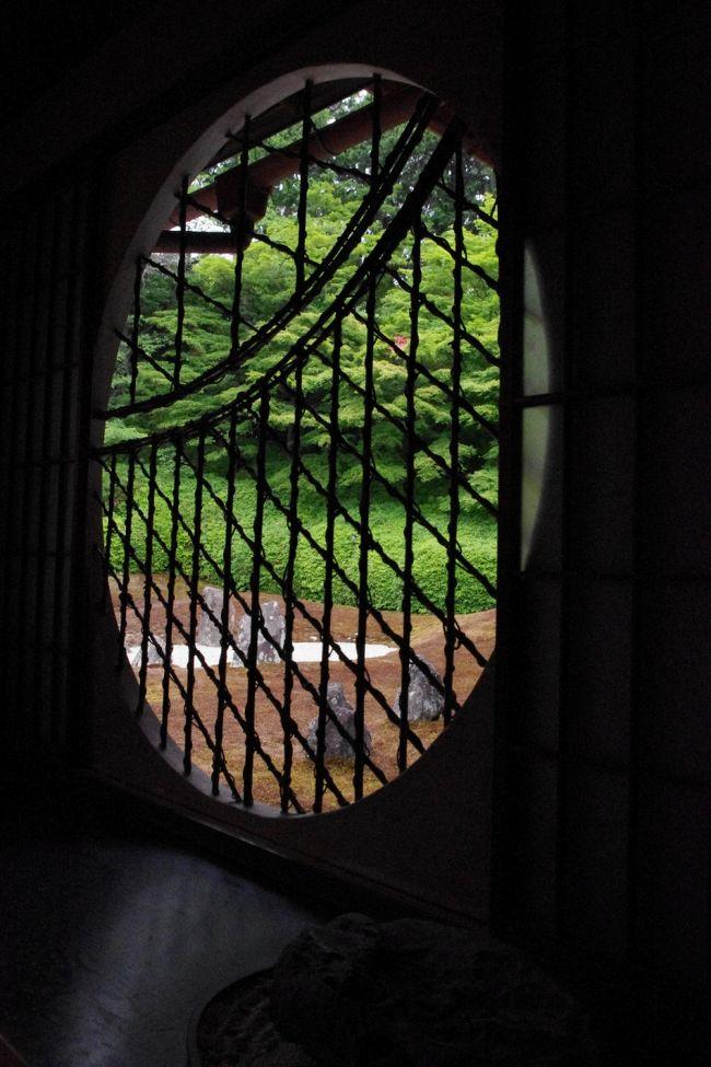 紅葉の名所は苔むす新緑の時季も美しく清々しい風景を見せてくれます。<br /><br />近畿地方が梅雨入りした日<br />虹の苔寺とも言われる東福寺塔頭 光明院へ<br /><br />