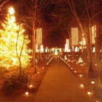 2012冬 クリスマスの軽井沢~星のや~へ