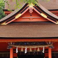 富士山を愛でる旅~富士浅間神社と白糸の滝~