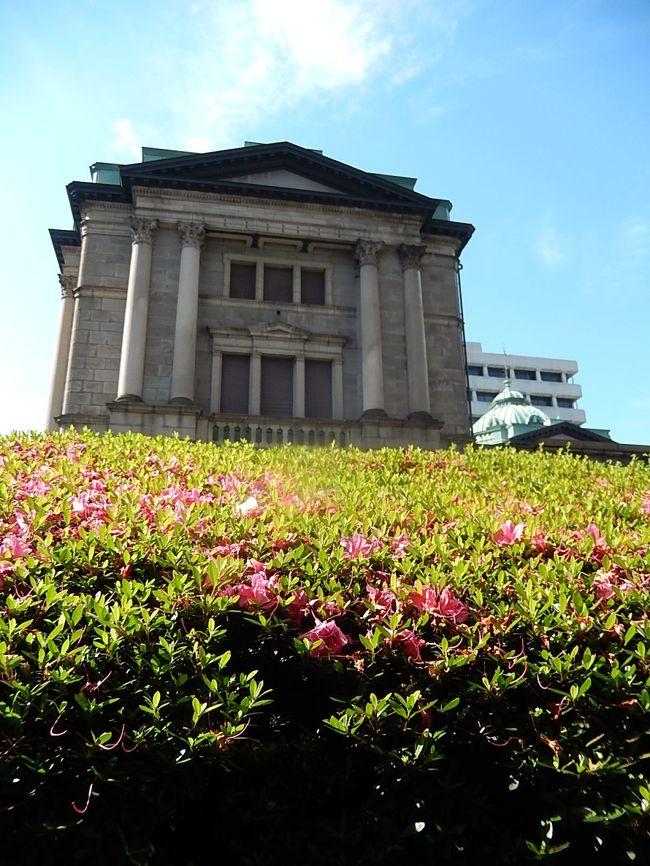 6月3日、午後3時頃、需要家訪問で常磐橋~三越前迄を歩いた。 青空の下に日本銀行の建物とサツキが良く合って美しかった。<br /><br /><br /><br /><br />*写真は日本銀行とサツキの風景