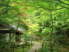 新緑の湖東三山 西明寺、金剛輪寺、百済寺へお参り。