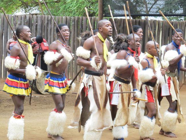 【23日目】<br /><br />今日は少し休養方々、エズルウィニ渓谷にあるスワジ文化村などをのんびりと巡ってみようと考えていた。<br /><br />スワジ文化村からマンテンガ・フォールを見に行って戻ってくると、祭りが今にも始まりそうだった。<br />歌と踊りと、もうプロ級の大迫力の民族民謡・舞踊だった。ズゥ~っと見てました。<br /><br /><br />---【全体の日程は、下記URLご参照下さい】----------------<br />URL:http://4travel.jp/traveler/tsuchi/pict/29620105/