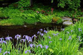 新緑の奥日光へ【2】~華厳ノ滝から御用邸記念公園へ~