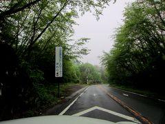 木立の緑が綺麗な梅雨時期の軽井沢ゴルフでエンジョイ4日間/6月2013
