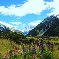 大自然を満喫!ニュージーランドの旅=後編= (マウントクック・デカポ湖)