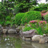 庭園紀行(171)・・・大石神社 庭園観賞