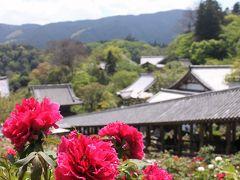 花の御寺巡り