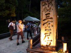 三室戸寺 あじさい園ライトアップ