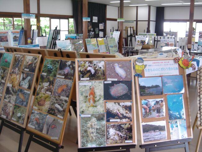 ご訪問ありがとうございます。<br /><br />京都御苑内の閑院宮(かんいんのみや)において環境省主催の近畿地方の国立公園展開催。<br />特に美しい海に生息する、うみうしが沢山紹介されました。<br />初めてうみうしを見たのは、淡路島の休暇村南淡路の桟橋付近でしたでした。<br /><br />閑院宮は第2次世界大戦後の昭和24年、京都御苑が国民公園となってからは、厚生省、のちに環境庁の京都御苑管理事務所などに使用されていました。平成18年3月に改修工事を終え、京都御苑の自然と歴史についての写真・絵図・展示品・解説を備えた収納展示室と庭園などを開放。<br /><br />日本では自然公園法に基づき、日本を代表する自然の風景地を保護し利用の促進を図る目的で、環境大臣が指定する自然公園のひとつである。国定公園が都道府県に管理を委託されるのに対し、国立公園は国(環境省)自らが管理する。日本の国立公園の面積の約60%が国有地。<br /><br />環境省自然系のレンジャー、アクティブレンジャー職員は希望ある探求にあふれています。そしてその若い職員達が全国の国立公園のフィールドで活躍中です。